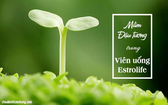 Viên uống trị tàn nhang Estrolife chứa mầm đậu tương