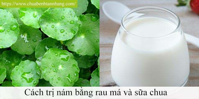 Cách trị nám da bằng rau má và sữa chua