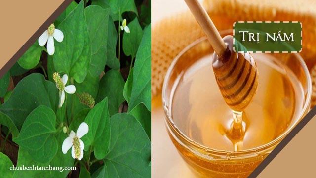 mặt nạ rau diếp cá và mật ong trị nám da